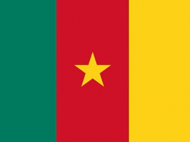 Cameroon ratifies the Protocol