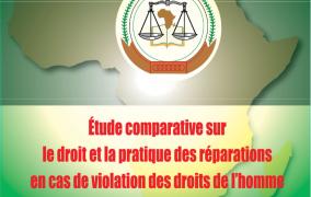 ÉTUDE COMPARATIVE SUR LE DROIT ET LA PRATIQUE DES RÉPARATIONS EN CAS DE VIOLATION DES DROITS DE L'HOMME